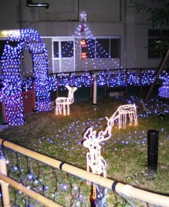 O市民病院_クリスマスモード